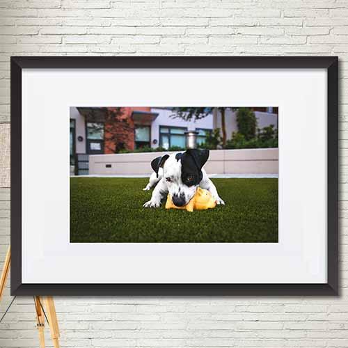 동물,꽃 포스터 매트액자 인테리어소품액자 가로 mtdmgr002